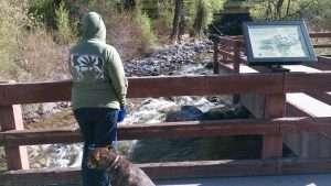cannabis tourism - Grizzly Creek Rest Area