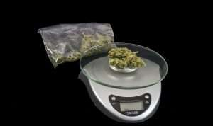 Marijuana Cooking Dosages